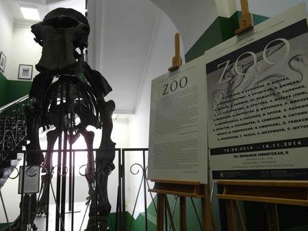 ZOO фото экспозиции